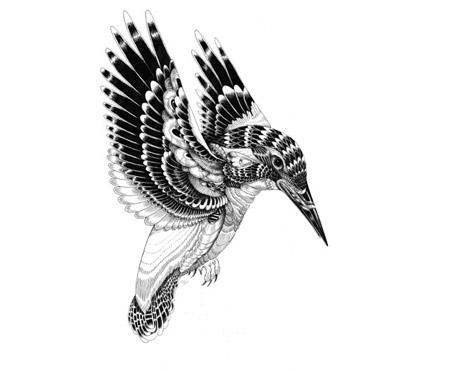 iain-bird