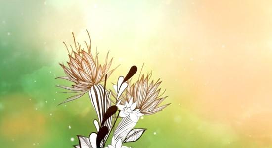 animation-season